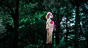 JAPAN, TOKYO, April 2013 - Emi Wakita, a young woman wearing Kimono, Shironuri make up, and pink wigs, walk in the forest of Meiji Jingu and Yoyogi Park in the center of Tokyo. The contrast of the deep nature of this forest ajoined to the area of Harajuku well known for the teenager's fashion activity as the Lolitas, is represented by a contrast of colors between the deep blue green and the Pink. Discovering the envoironnement, Emi makes the relation beetwen that two elements : the nature of the forest  and the kitch of Harajuku.