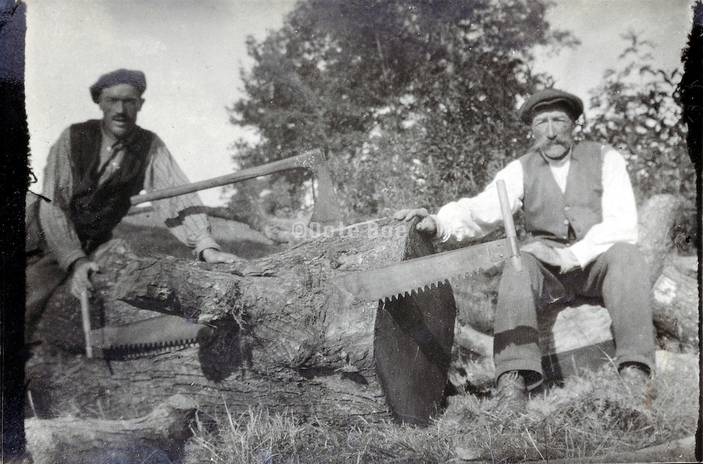 cutting a big tree in smaller pieces France 1932