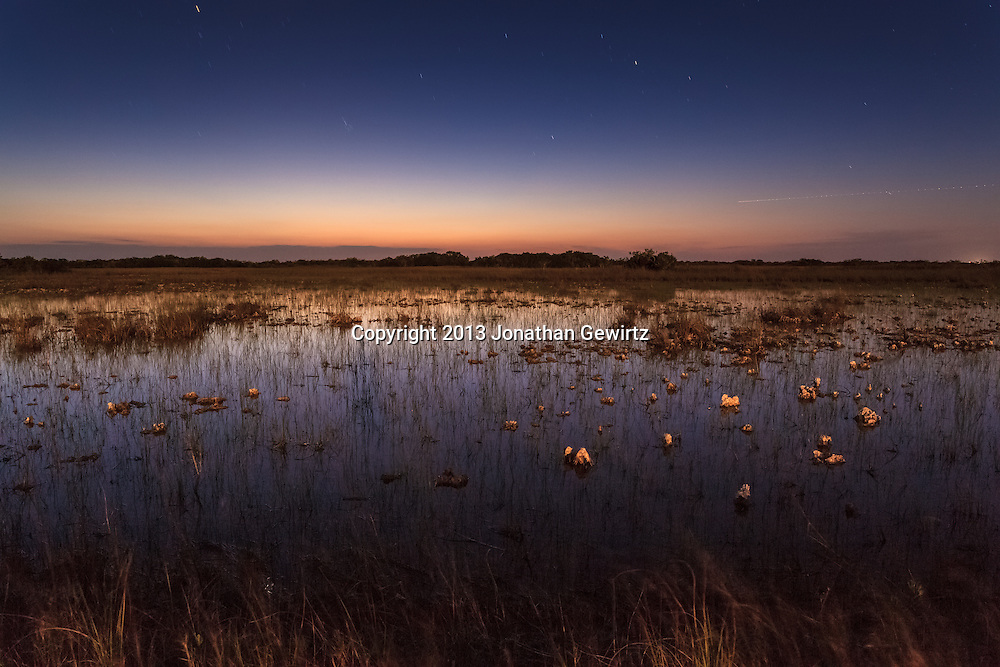 Long-exposure nocturnal view of flooded sawgrass prairie under a starry sky in the Shark Valley section of Everglades National Park, Florida. <br /> <br /> WATERMARKS WILL NOT APPEAR ON PRINTS OR LICENSED IMAGES.<br /> <br /> Licensing: https://tandemstock.com/assets/72795636