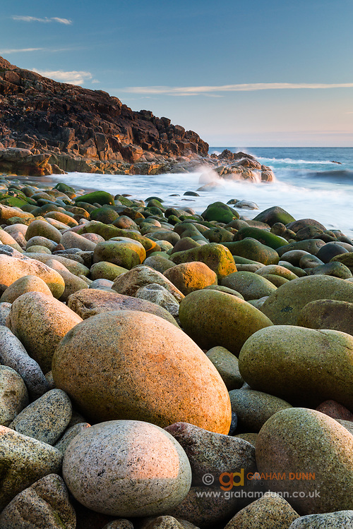 Warm evening light sidelights this coastal scene at Porth Nanven in Cornwall. Situated in the Cot Valley, near St Just, and affectionately known as Dinosaur Egg Beach, it is strewn with these perfectly formed rocks and boulders. July. Summer in England, UK.