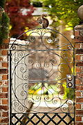 A squirrel sits on an iron gate of historic home in Charleston, SC
