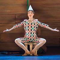 Yvette Bozsik: Pinocchio