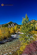 Autumn color along the Teton River and Mount Lockhart in the Lewis and Clark National Forest, Montana, USA