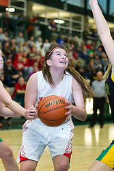 30 December 2014:  State Farm Holiday Classic Coed Basketball Tournament at Shirk Center, Illinois Wesleyan University, Bloomington Illinois- Day 4