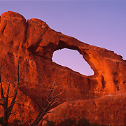 Elegant and graceful Skyline Arch in Arches National Park, Utah.