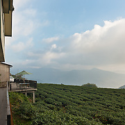 Homestay - Taiwan Review