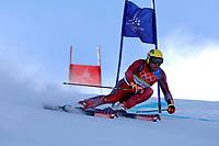 Photo: Catrine Gapper.<br />Winter Olympics, Turin 2006. Alpine Skiing. 20/02/2006.<br />Herman Maier wins Bronze Medal in Men s Giant Slalom