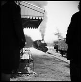 Mid-Suffolk Light Railway Co. 2009
