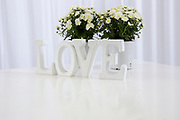 white LOVE text with white flowers