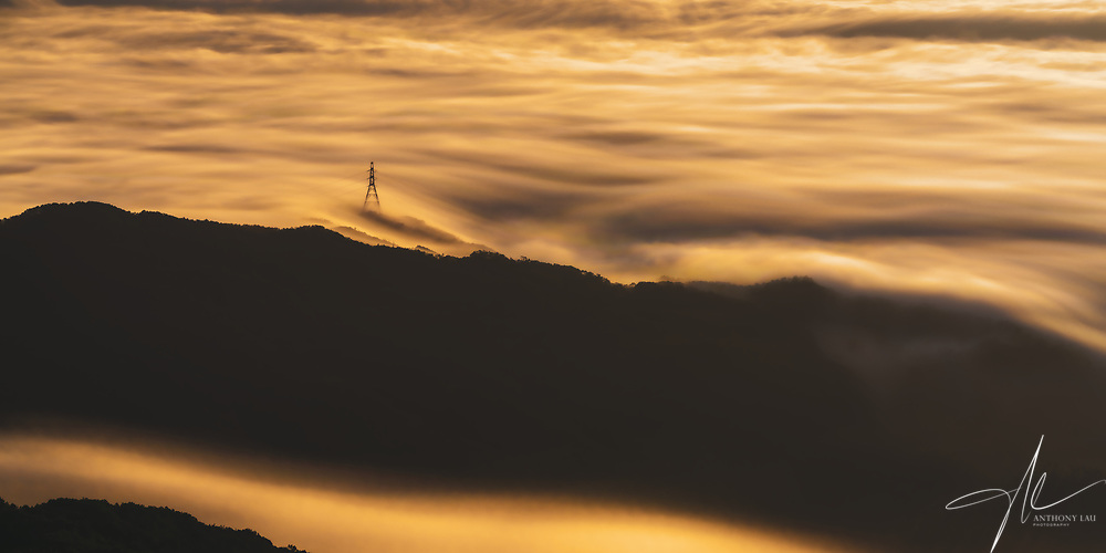 The flow of cloud painted glamourously by morning sun, transforming the scene into a river of liquid gold.