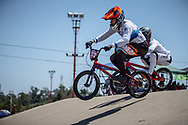#313 (KIMMANN Niek) NED  at Round 9 of the 2019 UCI BMX Supercross World Cup in Santiago del Estero, Argentina