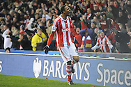 Stoke city's Steven N'Zonzi celebrates after scoring his sides 2nd goal during the Barclays Premier league, Stoke city v Sunderland at the Britannia stadium in Stoke on Trent, England on Saturday 23rd Nov 2013. pic by Jeff Thomas, Andrew Orchard sports photography,