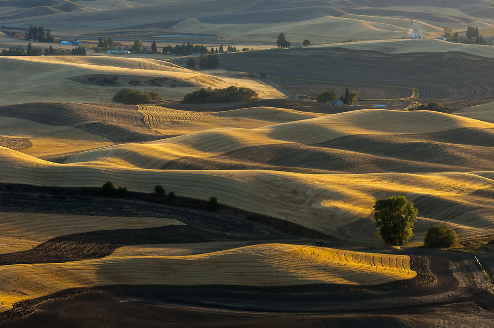 Palouse Hills wheat fields, view from Steptoe Butte State Park, afternoon light, autumn equinox, September 21, Whitman County, Washington, USA