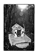 """SHOT 2/17/19 5:14:30 PM -  A small capilla on the outskirts of Tekax de Álvaro Obregón, Yucatan Mexico. The capillas are often dedicated to certain patron saints or in this case someone that has died at or near the site. Often times they contain prayer candles, pictures, personal artifacts or notes. Tekax, sometimes spelled Tecax (in full, Tekax de Álvaro Obregón), is a small city in the Mexican state of Yucatan in the southernmost part of the state. Tekax means """"Place of the Forests"""" in the Yucatec Maya language. Tekax was briefly declared the capital of Yucatan in 1845. Tekax is also the name of the surrounding municipality of which the city of Tekax serves as municipal seat of government. In the census of 2005 Tekax had a population of 23,524. (Photo by Marc Piscotty / © 2019)"""
