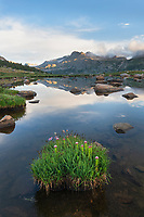 Pond near Middle Fork and Lee Lakes, Bridger Wilderness, Wind River Range Wyoming.