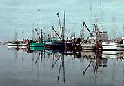 CS01594-01.  Boats in Charleston, Oregon harbor. November 1978