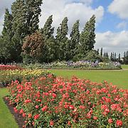Regents Park Rose Garden - London, UK