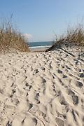 Beach path through the sand on Isle of Palms, South Carolina.