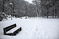 Bialystok, 26.01.2017. Po całodobowych obfitych opadach sniegu miasto zostalo przykryte 30 cm warstwa bialego puchu. Szczegolnie uroczo wygladaly miejskie parki N/z zasniezona lawka w Parku Zwierzynieckim fot Michal Kosc / AGENCJA WSCHOD