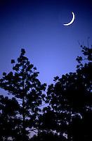 Moon at twilight in Yosemite National Park, CA