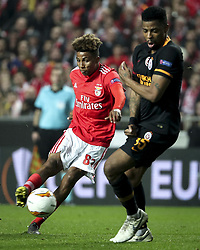 February 22, 2019 - Na - Lisbon, 21/02/2019 - SL Benfica received Galatasaray SK tonight at Est√°dio da Luz in the second qualifying round of the Europa League 2018/2019. Gedson Fernandes, Ryan Donk  (Credit Image: © Atlantico Press via ZUMA Wire)