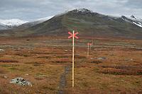 Winter trail markers marking Kungsleden Trail north of Ammarnäs, Lapland, Sweden