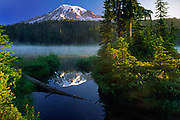 Reflection Lakes at Mount Rainier<br /> .....<br /> Mount Rainier National Park is a United States National Park located in southeast Pierce County and northeast Lewis County in Washington state. It was established on March 2, 1899 as the fifth national park in the United States. The park encompasses 236,381 acres including all of Mount Rainier, a 14,411-foot stratovolcano. The mountain rises abruptly from the surrounding land with elevations in the park ranging from 1,600 feet to over 14,000 feet. The highest point in the Cascade Range, around it are valleys, waterfalls, subalpine meadows, old-growth forest and more than 25 glaciers. The volcano is often shrouded in clouds that dump enormous amounts of rain and snow on the peak every year and hide it from the crowds that head to the park on weekends.<br /> <br /> Mount Rainier is circled by the Wonderland Trail and is covered by several glaciers and snowfields totaling some 35 square miles. Carbon Glacier is the largest glacier by volume in the contiguous United States, while Emmons Glacier is the largest glacier by area. About 1.8 million people visit Mount Rainier National Park each year. Mount Rainier is a popular peak for mountaineering with some 10,000 attempts per year with approximately 50% making it to the summit.