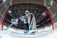 KELOWNA, BC - JANUARY 31: Cole Schwebius #31 of the Kelowna Rockets kneels in the crease at the start of second period against the Spokane Chiefs at Prospera Place on January 31, 2020 in Kelowna, Canada. (Photo by Marissa Baecker/Shoot the Breeze)