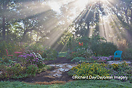 63821-23719 Sun rays in fog in flower garden, Marion Co., IL