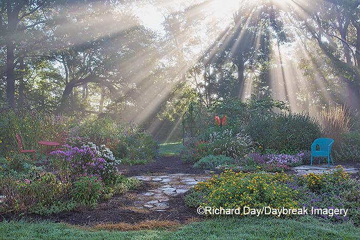 63821-23719 Sun rays in fog in flower garden, Marion Co., IL