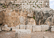 Israel, Golan Heights, remains of the Nimrod Fortress details of the lion bas relief