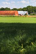 Rusty and new farm hangars in hot summer day, Virķēni, Northern Vidzeme, Latvia Ⓒ Davis Ulands | davisulands.com