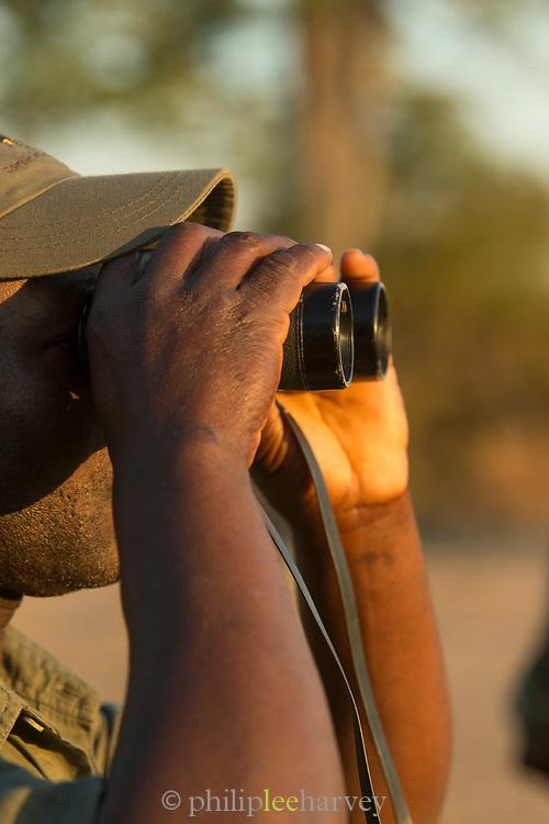 Guide looking through binoculars at Chikoko Tree Camp, South Luangwa National Park, Zambia