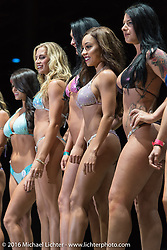 Miss Buffalo Chip swimsuit competition on the main stage during the annual Sturgis Black Hills Motorcycle Rally.  SD, USA.  August 13, 2016.  Photography ©2016 Michael Lichter.