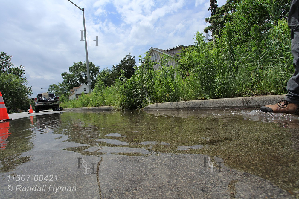 Stormwater fills street in Chicago South Side neighborhood beside rain garden designed to reduce runoff into Lake Michigan; Blue Island, Illinois.