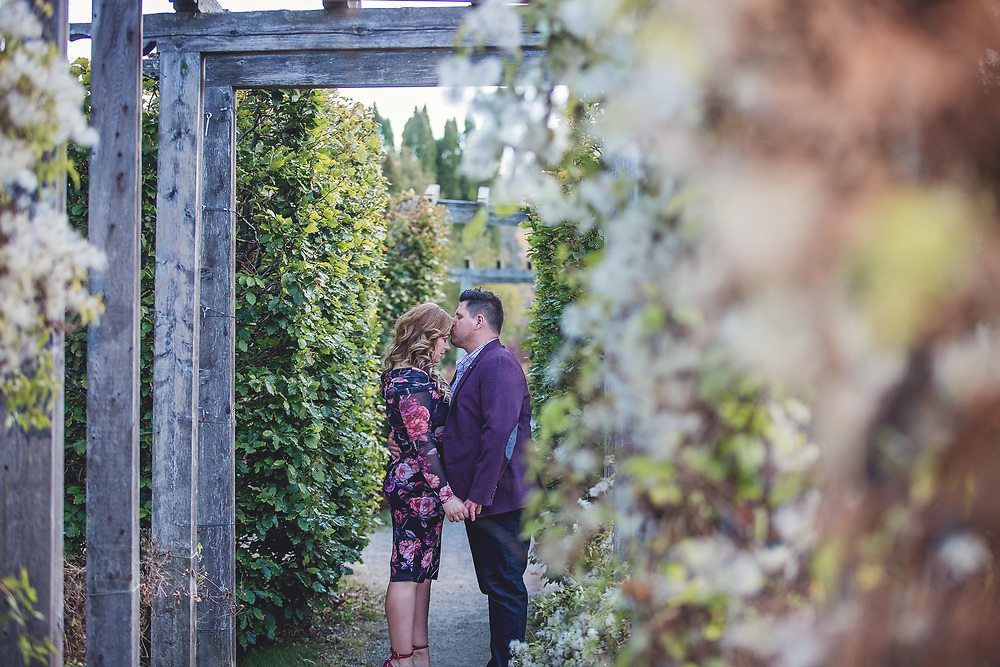 Late Fall Guelph Arboretum Engagement