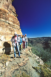 Richard, Tom, Shelly & Vince Hiking To Cliff Dwelling On Mustang Ridge, Apache Reservation