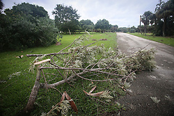 October 7, 2016 - Florida, U.S. - Branches are down in South Bryant Park in Lake Worth Friday, October 7, 2016. (Credit Image: © Bruce R. Bennett/The Palm Beach Post via ZUMA Wire)