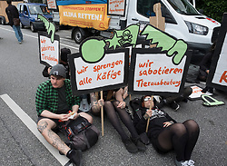 8th July, 2017. Hamburg, Germany. large demonstration march through central Hamburg protesting against G20 Summit taking place in city. Here animal rights protestors wait to join march.