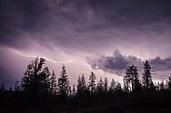 Cloud to Cloud lighting illuminnates cumulonimbus thunderstorm clouds at night, Tahoe National Forest, Sierra County, California
