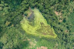 Luftaufnahme von Karihani Lake, Tsingoni, Mayotte / Aerial View of Karihani Lake, Tsingoni, Mayotte