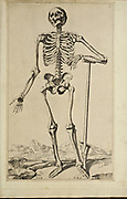 """Male full body front skeleton woodcut print at the opening of the Human Anatomy book """"Notomie di Titiano"""" Printed in Italy in 1670"""
