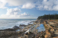Shore Acres State Park Oregon