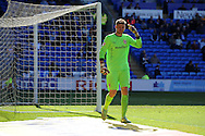Cardiff city goalkeeper David Marshall looks on. Skybet football league championship, Cardiff city v Millwall at the Cardiff city stadium in Cardiff, South Wales on Saturday 18th April 2015<br /> pic by Andrew Orchard, Andrew Orchard sports photography.<br /> contact and payments to Andrew Orchard, 2 Old Vicarage close,