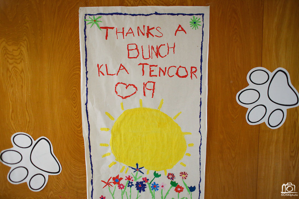 Thank You signs fill the hallways at Zanker Elementary School in Milpitas, California, on February 27, 2013. (Stan Olszewski/SOSKIphoto)