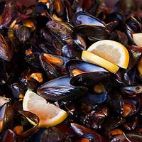 Europe, Norway, Bergen. Mussels of Bergen.