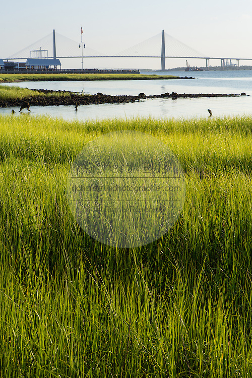 View of the Arthur Ravenel Jr. Bridge and marsh from waterfront park in the historic district of Charleston, SC.