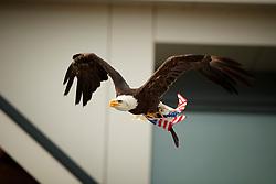 Team voorstelling WEG Tryon, American Eagle<br /> Nederlands Kampioenschap Dressuur <br /> Ermelo 2018<br /> © Hippo Foto - Dirk Caremans<br /> 29/07/2018
