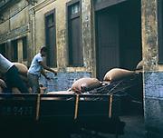 Men unloading sacks of coffee into a warehouse for export, Santos, port of Sao Paulo, Brazil, South America