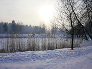 Saint Petersburg, Russia, Pavlovsk park in winter